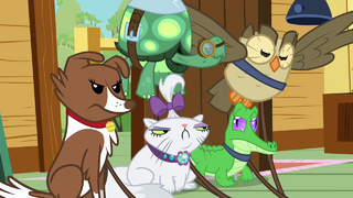 320px-The_other_pets_unhappy_S3E11.png