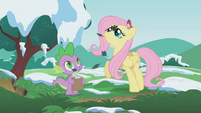 Fluttershy and Spike look up S1E11