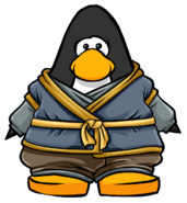 Stone Ninja Outfit from a Player Card