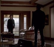 TVD 4x132