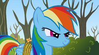 Rainbow Dash Two can play S1E13