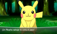 Pikachu salvaje en XY