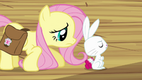 Fluttershy trying to make Angel happy S03E11