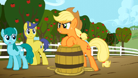Applejack can't sale S2E15