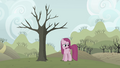 Pinkie Pie in front of withering tree S03E13.png