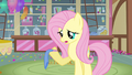 Fluttershy trying her best S3E13.png