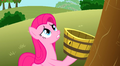 Pinkie watches the tree sadly S3E13.png