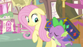 Fluttershy she's a true friend S3E13.png
