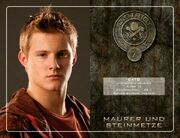 042247038-the-hunger-games-die-tribute-von-panem
