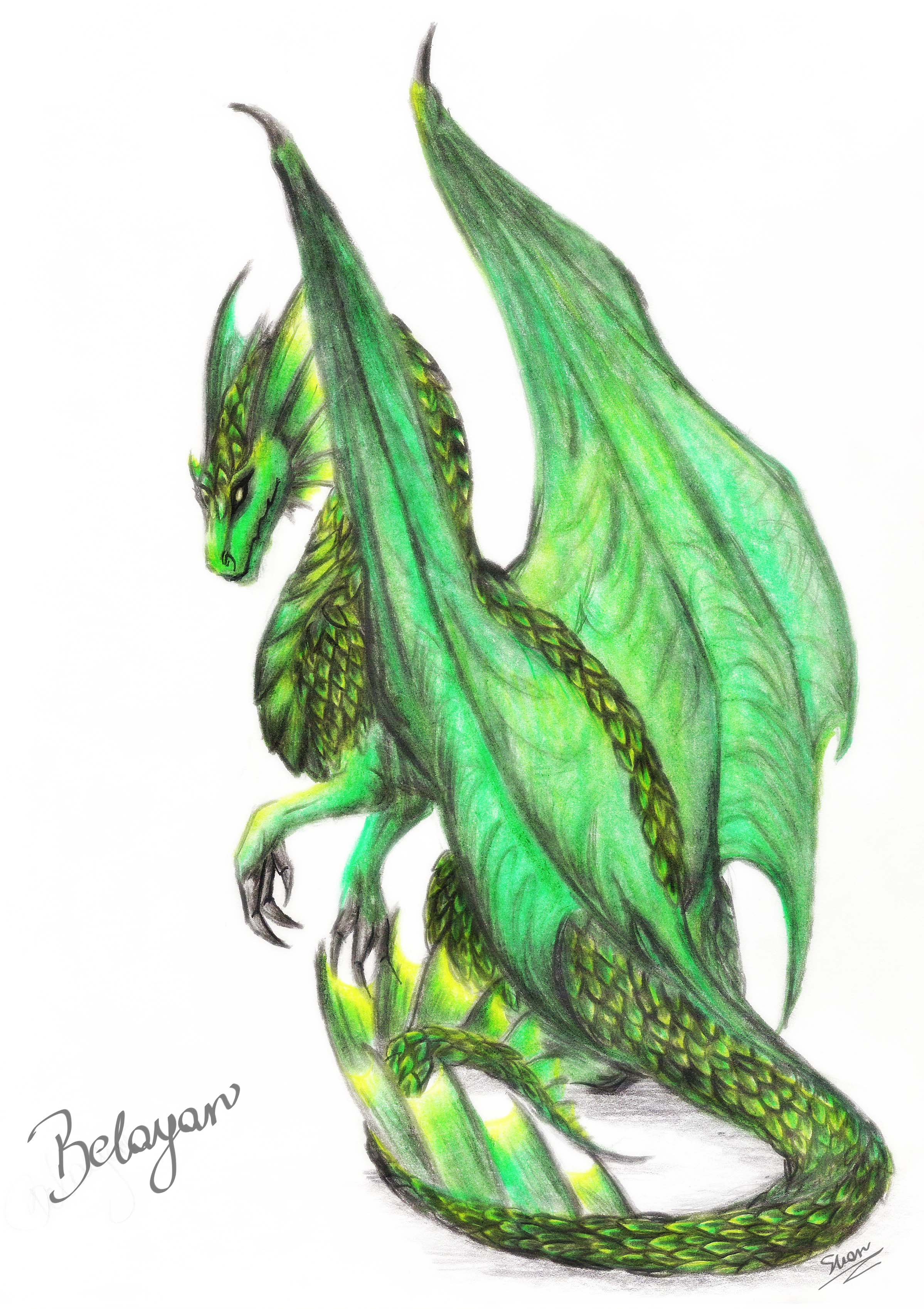 view topic dragons of the wild form thread chicken smoothie