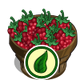 Organic Raspberry Bushel-icon