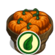 Organic Pumpkin Bushel-icon