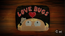 Love Bugs