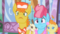 Mr. Cake Pinkie Pie S2E13.png