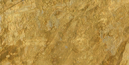 Gold Camouflage single player menu icon BOII