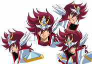 Pegasus Koga New Cloth 2