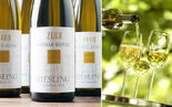 2010 09 16-Riesling