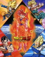 Goku SSJ God Poster DBZ BOG OMG
