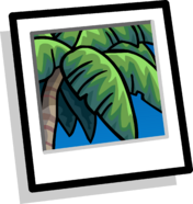 Tropical Palm Background clothing icon ID 9038