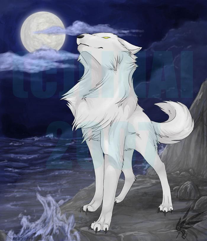 Sabiancy naruto fanon wiki ninjutsu taijutsu fan fiction - Wolf girl anime pictures ...