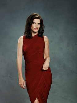 Robin Scherbatsky Staffel 8