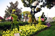 Peter Pan Topiary