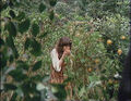 Sarah Jane Smith picking oranges.jpg