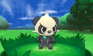 Pancham en combate