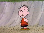 What Have We Learned, Charlie Brown (18)