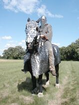 Ancient Sasanid Cataphract Uther Oxford 2003 06 2(1)