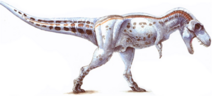Daspletosaurus-1