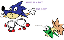 Killed-by-a-sanic