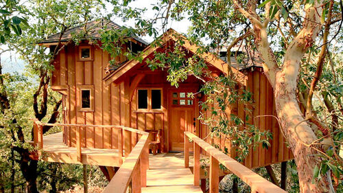 backyard bungalow treehouse masters wiki