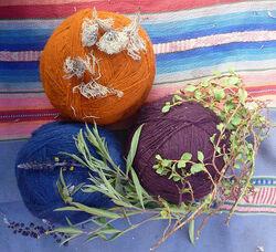 Wolle gefärbt mit Pflanzen