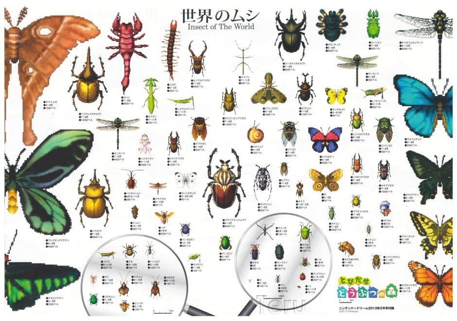 Animal Crossing New Leaf All Island Bugs
