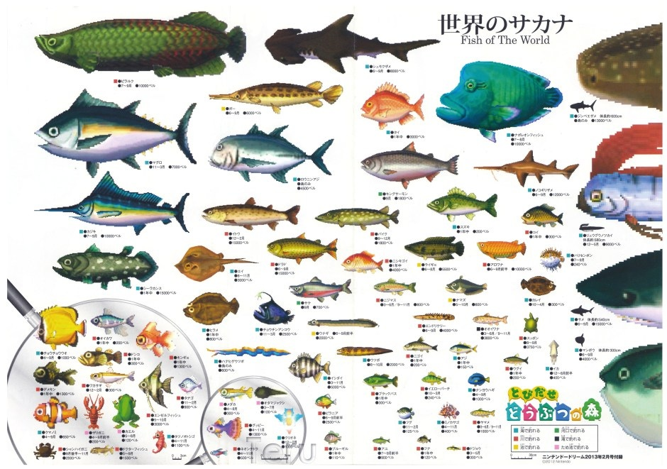 fish animal crossing wiki