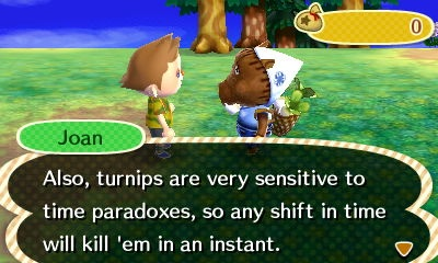 Animal Crossing New Leaf Time Travel Effects