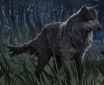 werwolf harry potter