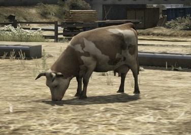 Cow-GTAV-idle.jpg