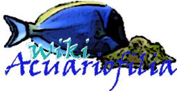 Wiki_Acuariofilia_Logo_V1.png
