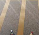 Esquadrões de Konoha