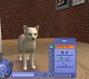 Create a Pet/The Sims 2