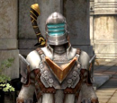 Ser Isaac armor set