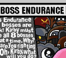 Boss Endurance