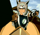 Sokka's weapons