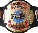 ACW Television Championship