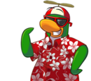 Rookie (Club Penguin)