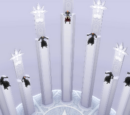 True Organization XIII