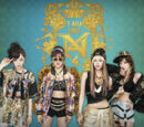T-ara N4