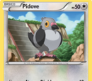 Pidove (Negro y Blanco TCG)
